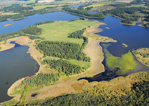 Shall Reed Beds Be Restored in the Velký and Malý Tisý Fishponds National Nature Reserve?