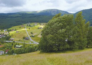 Cumulative effects of building activities on the Krkonoše/Giant Mts. meadows