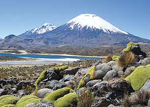 The Lauca National Park